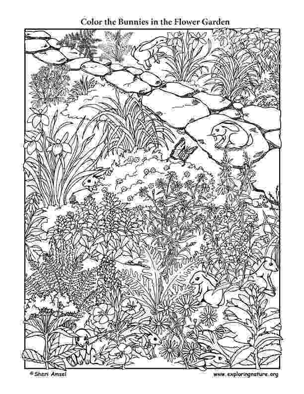 flower garden colouring picture spring coloring pages 2018 dr odd picture garden flower colouring
