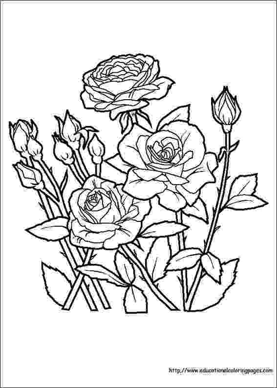 flower images to color beautiful flowers coloring pages for kids printable free flower images to color