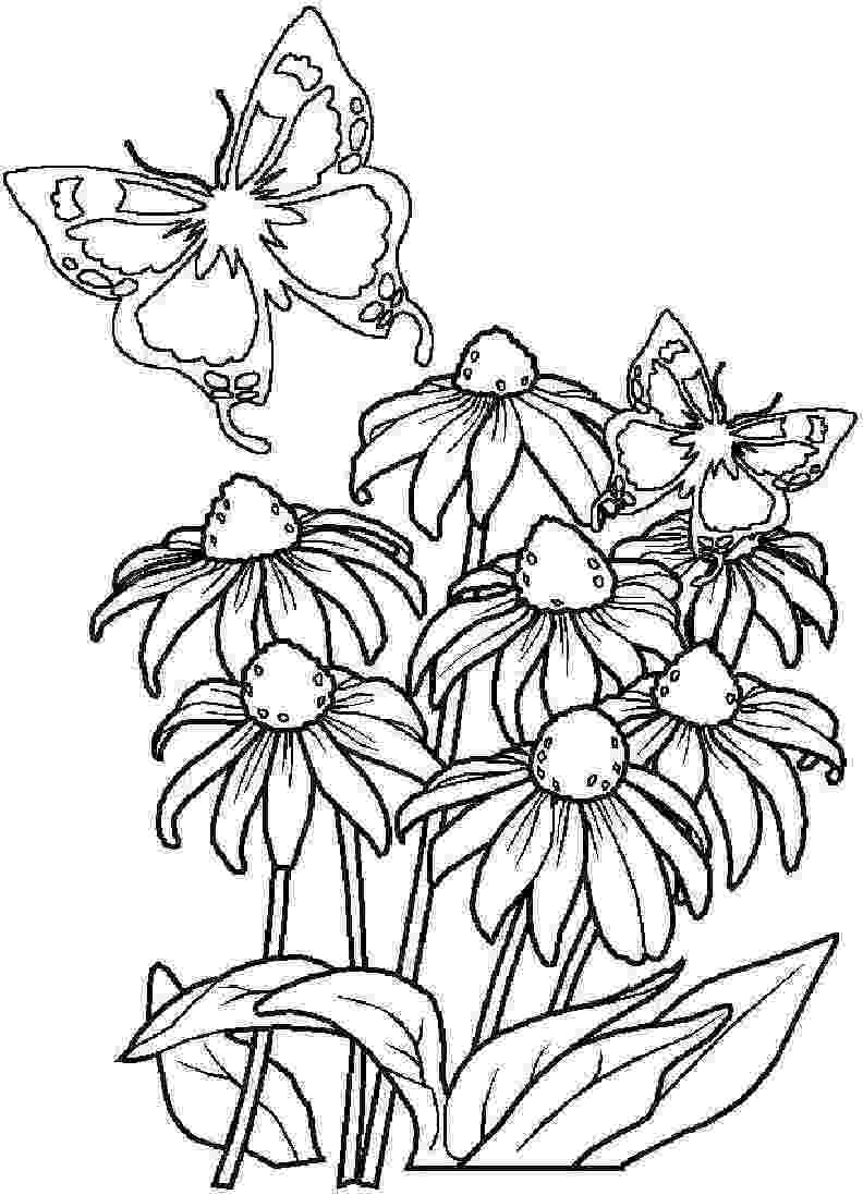 flowers colouring free printable hibiscus coloring pages for kids colouring flowers 1 1