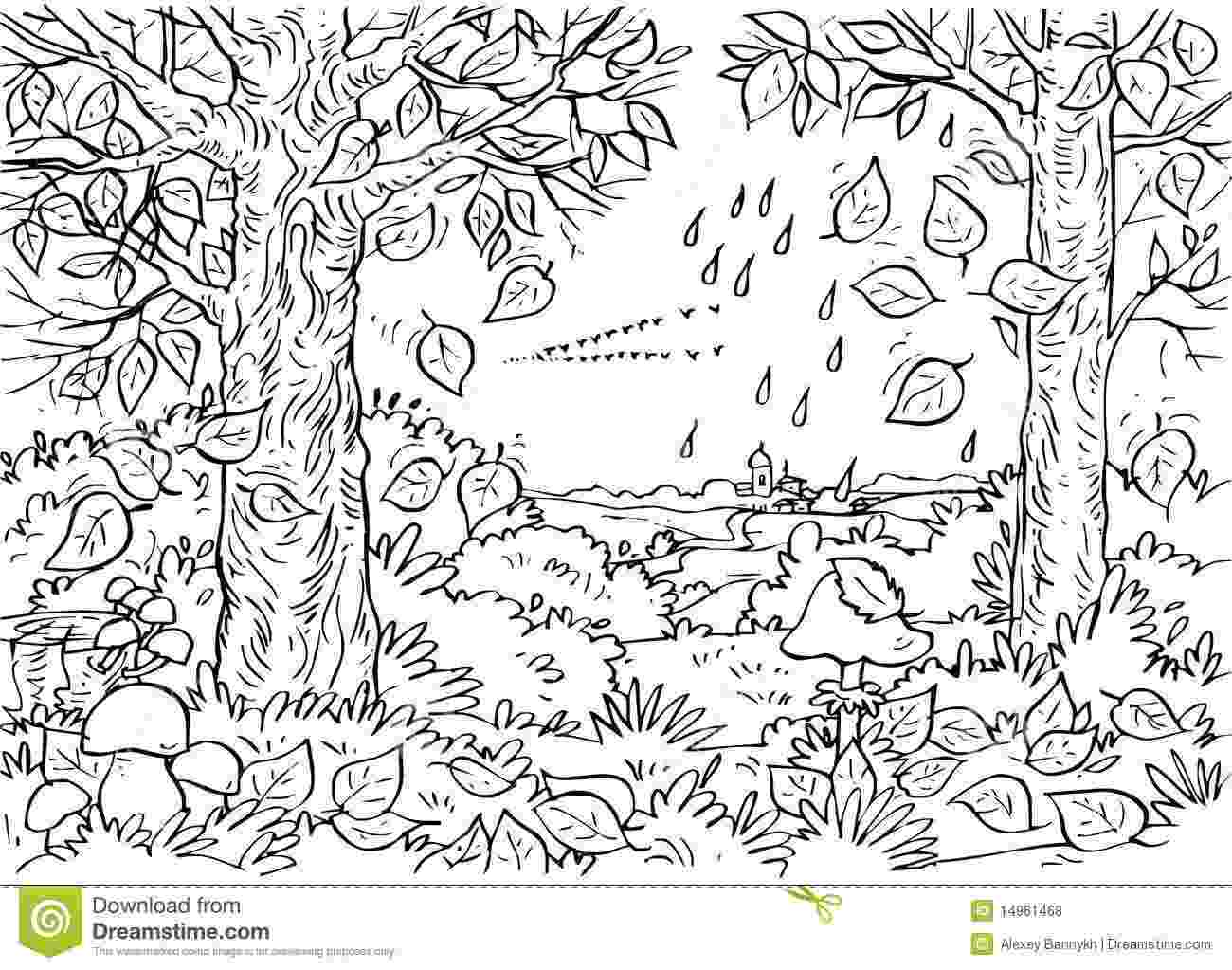 forest coloring sheets 91875 deciduous forest coloring pagesjpg 13001023 sheets forest coloring