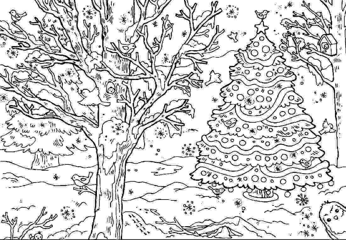 forest coloring sheets coloring pages rainforest2b2 natural world gt forest sheets forest coloring