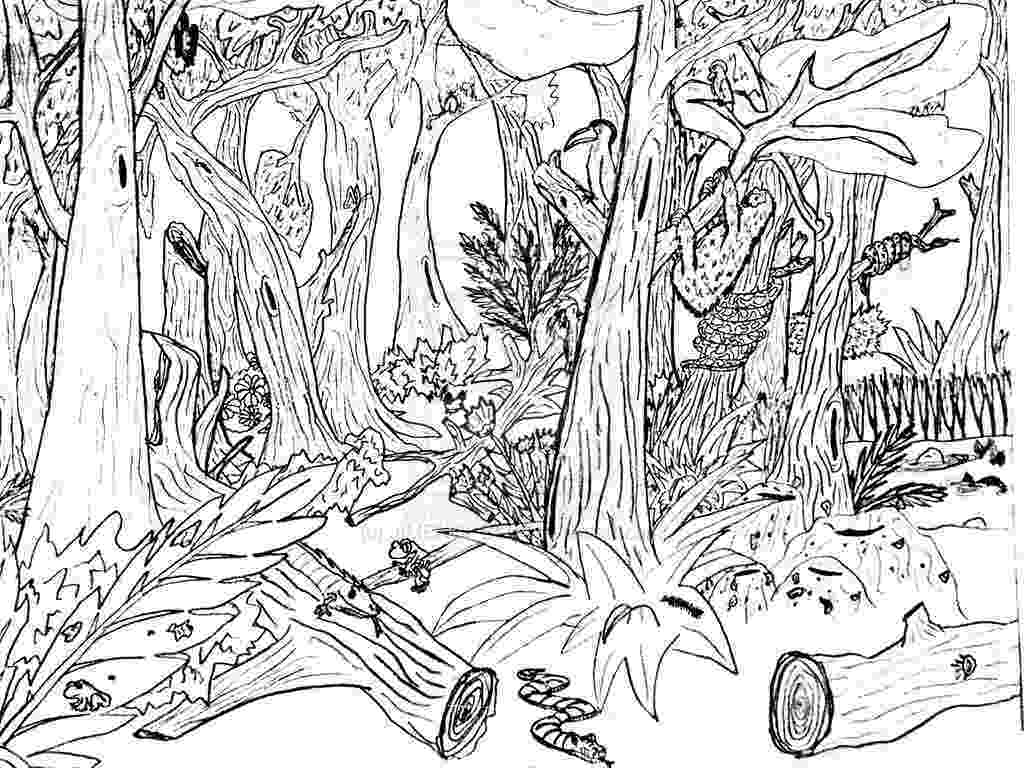 forest coloring sheets free printable nature coloring pages for kids best coloring sheets forest