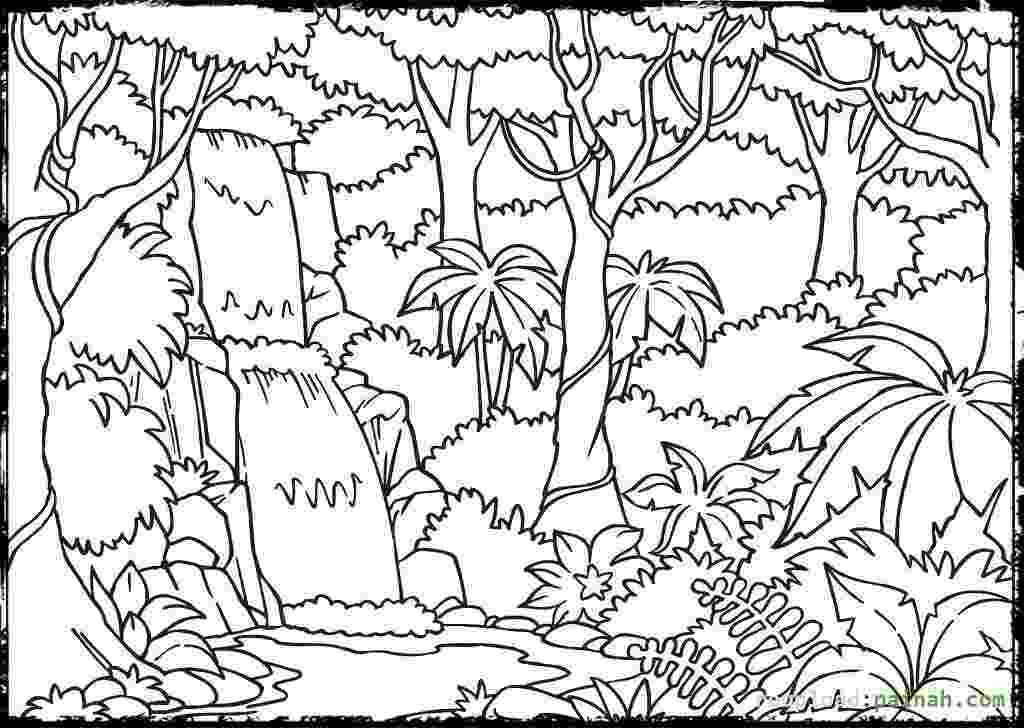 forest coloring sheets rainforest coloring pages to download and print for free sheets forest coloring