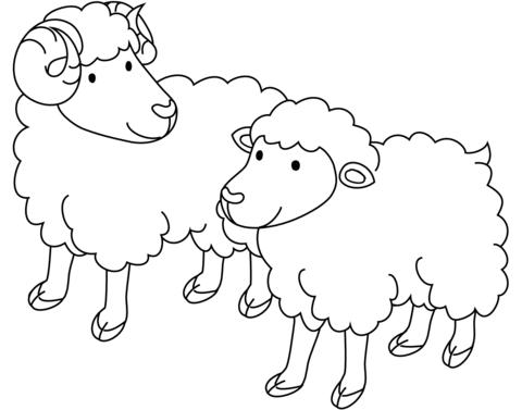 fotos de ovejas para imprimir colorear divertidas ovejas ovejas imprimir fotos para de