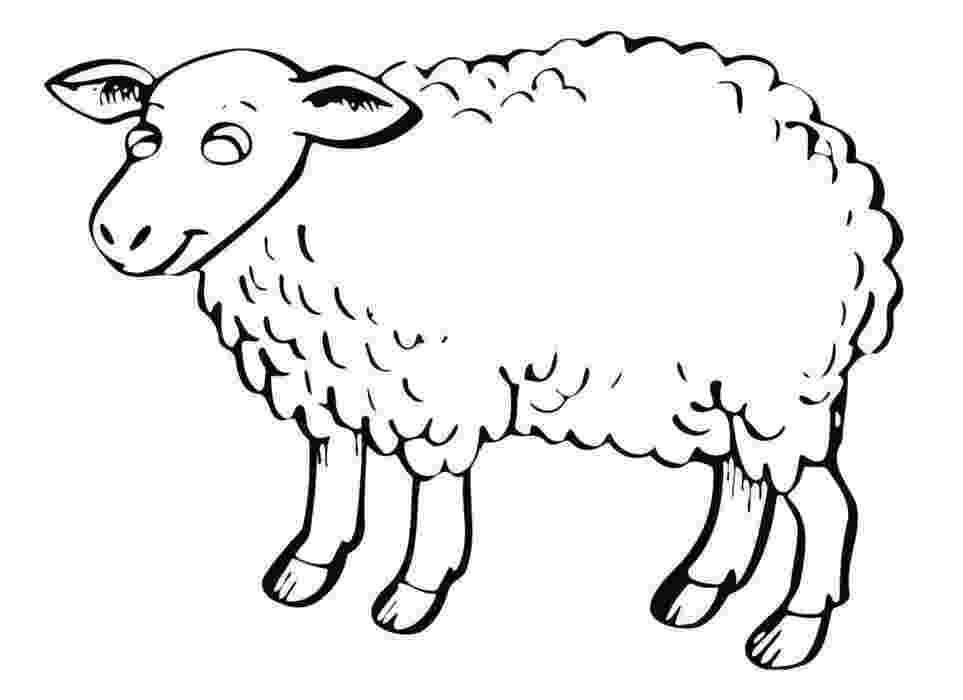 fotos de ovejas para imprimir dibujo para colorear de ovejas fotos para ovejas imprimir de