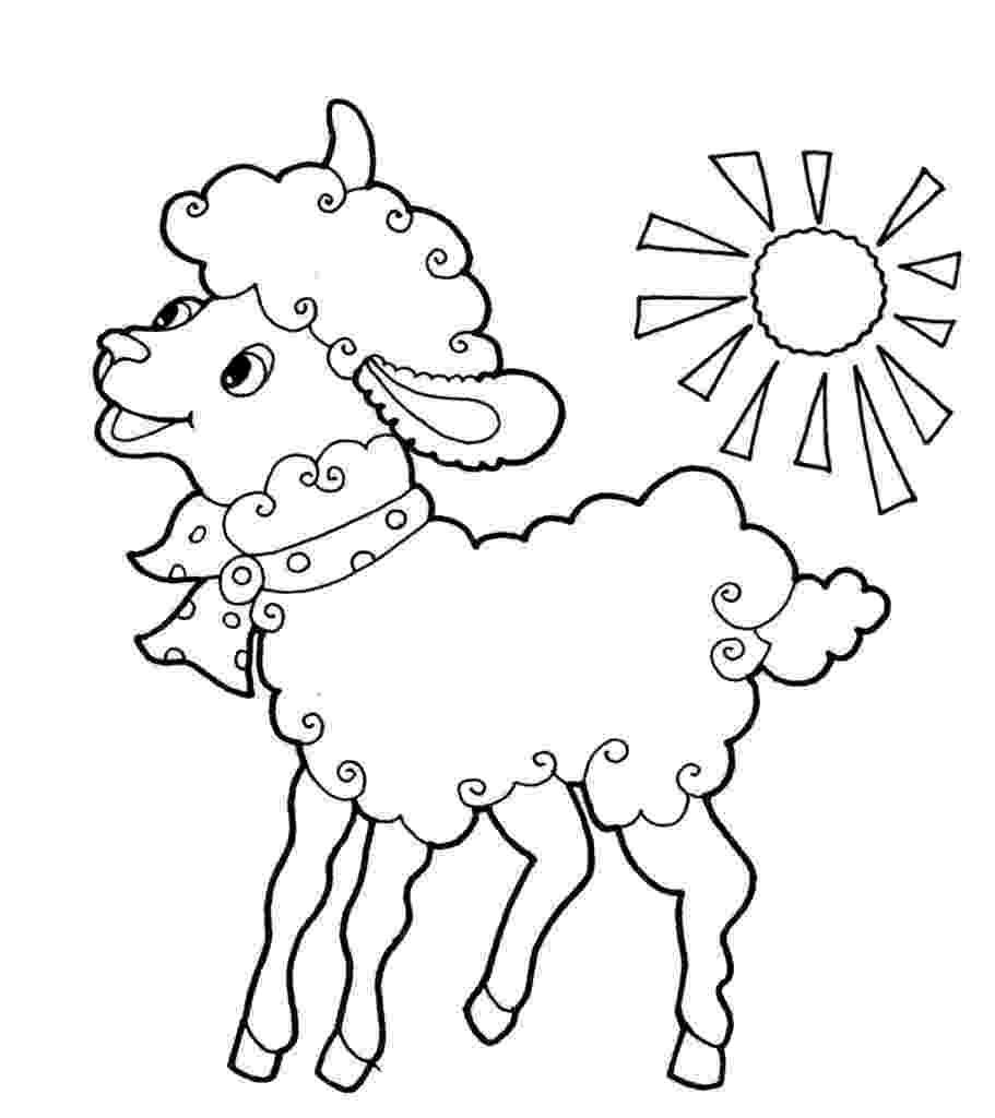 fotos de ovejas para imprimir dibujos de ovejas para colorear y pintar para de imprimir fotos ovejas