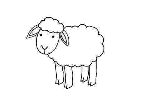 fotos de ovejas para imprimir ovejas dibujos para colorear de fotos para ovejas imprimir