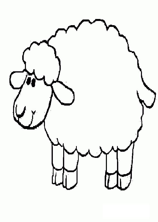 fotos de ovejas para imprimir ovejas para colorear dibujosparacoloreareu fotos imprimir ovejas para de