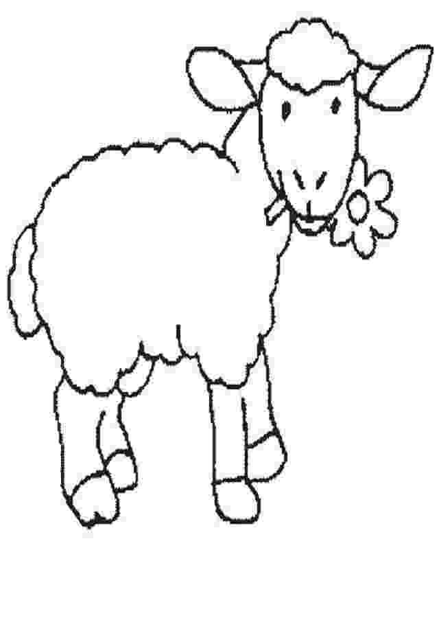 fotos de ovejas para imprimir ovejas para colorear dibujosparacoloreareu imprimir ovejas fotos de para