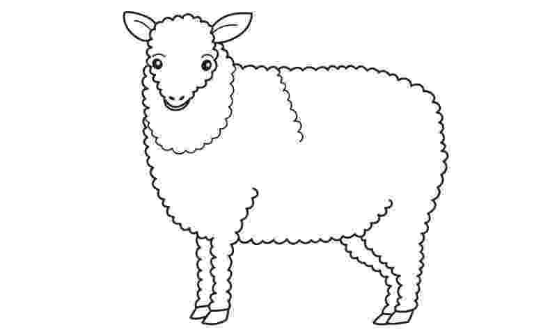 fotos de ovejas para imprimir ovejas para pintar para imprimir de fotos ovejas