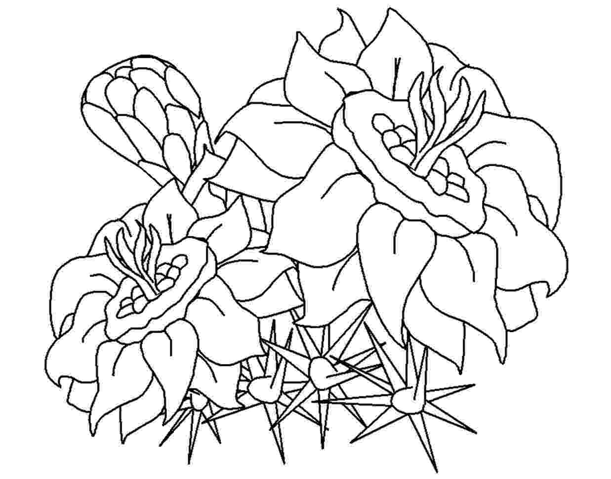 free coloring pictures of flowers difficult flower coloring pages getcoloringpagescom free of flowers coloring pictures