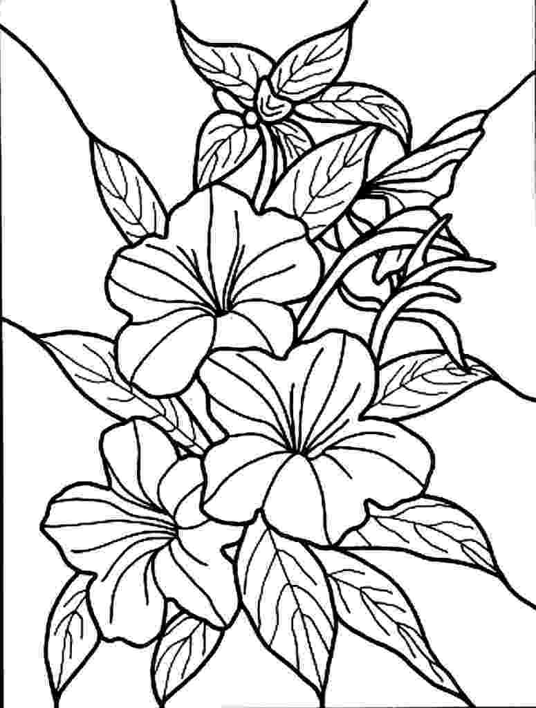free coloring pictures of flowers free printable flower coloring pages for kids best flowers coloring pictures free of