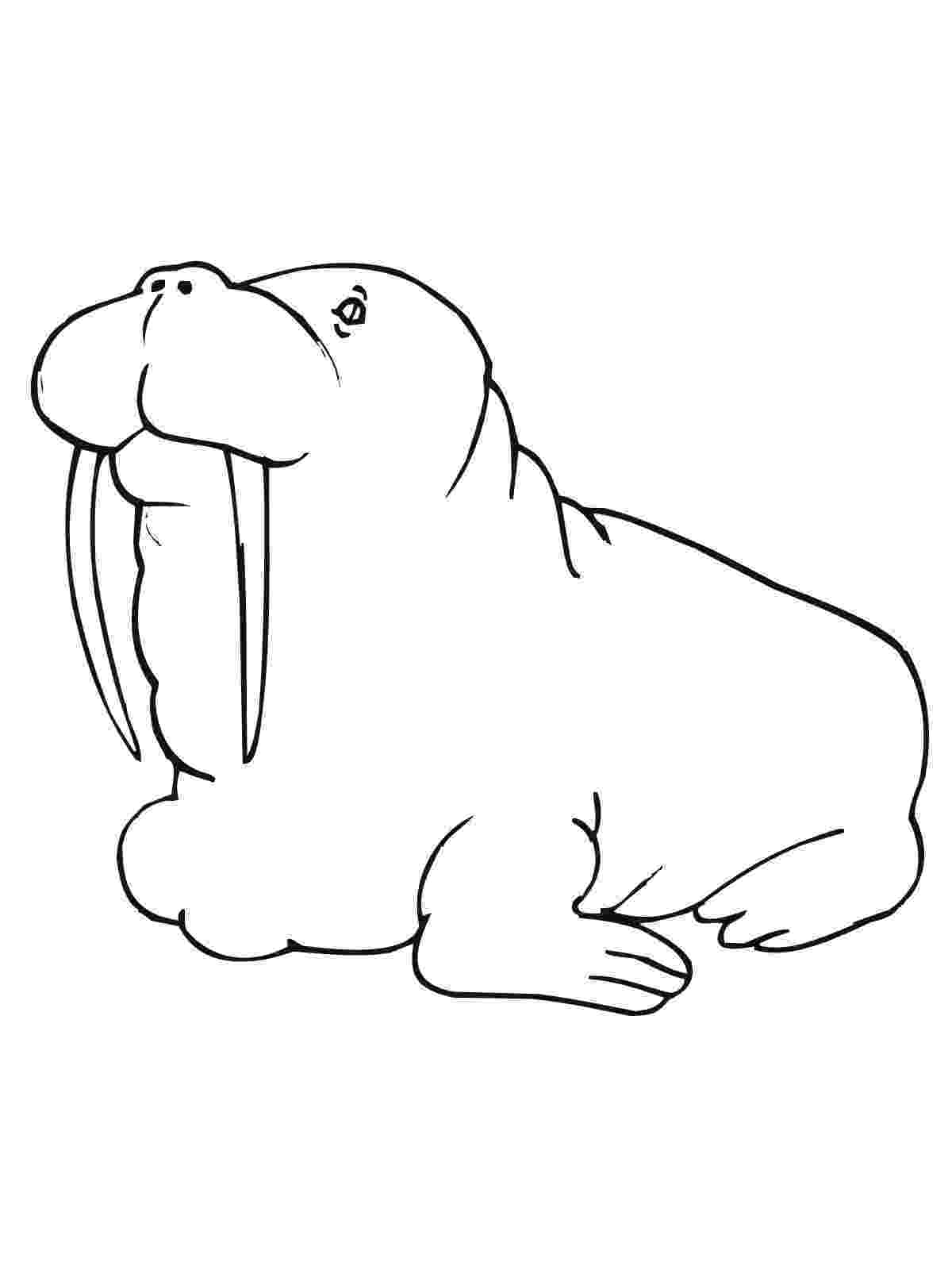 free coloring pictures printable toad coloring pages for kids cool2bkids free pictures coloring