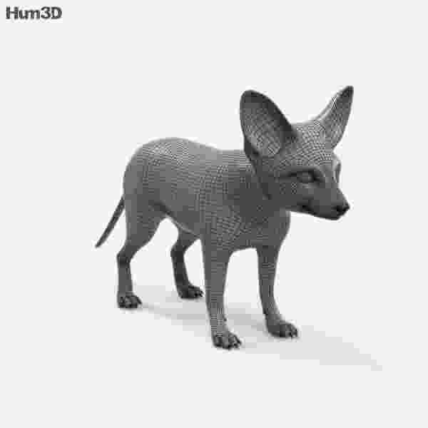 free fennec fox free printable wedding coloring pages 6 free printable fennec fox free
