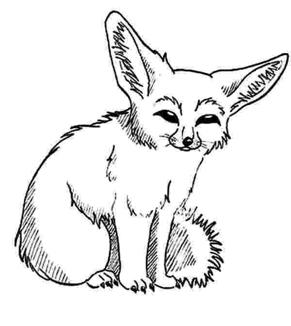 free fennec fox royalty free desert fox clip art vector images free fennec fox