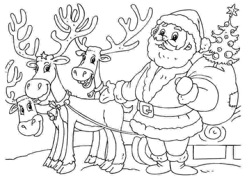 free printable coloring pages reindeer free printable reindeer coloring pages for kids free pages reindeer coloring printable