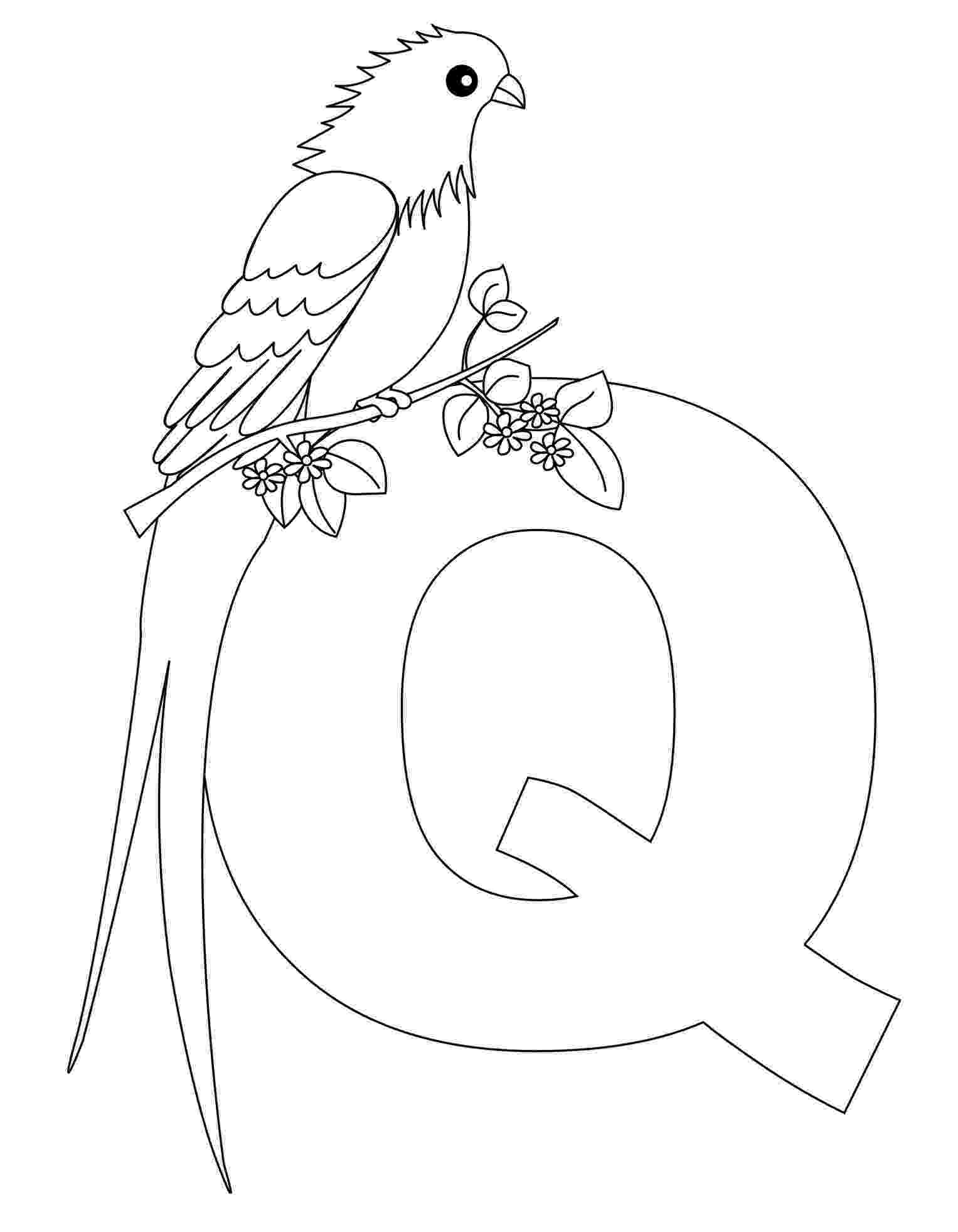 free printable letter q coloring pages free printable alphabet coloring pages for kids best q letter free coloring printable pages