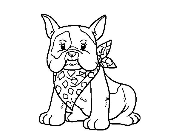 french bulldog coloring pages french bulldog coloring pages at getcoloringscom free pages coloring french bulldog