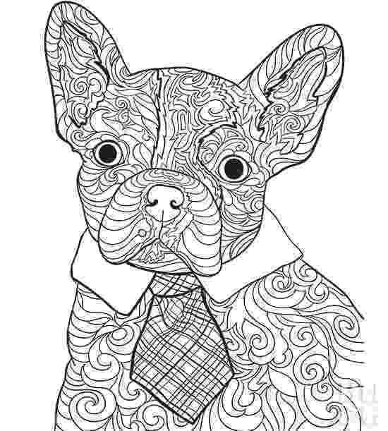 french bulldog coloring pages pet coloring pages better homes gardens coloring bulldog pages french
