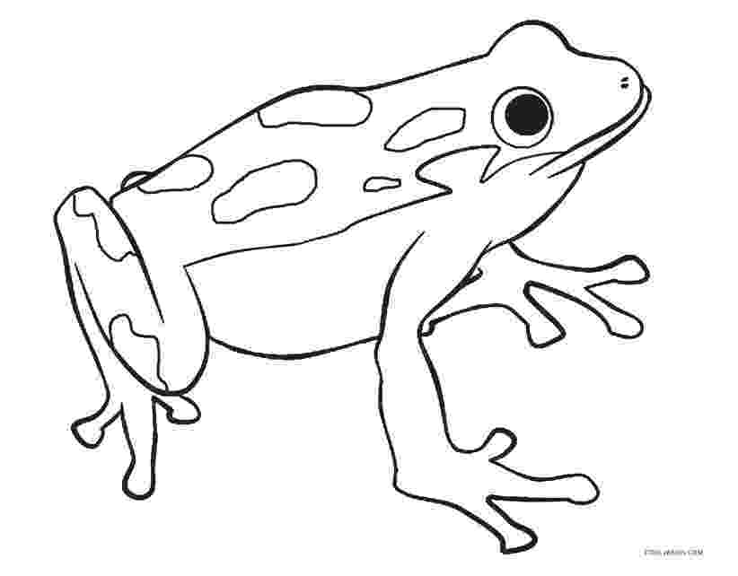 frog to color free printable frog coloring pages for kids color to frog 1 1