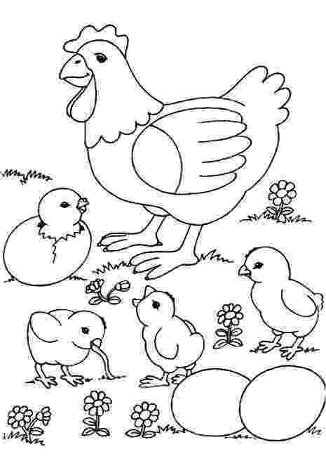 gallina para colorear gallina 3 wchaverri39s blog para colorear gallina