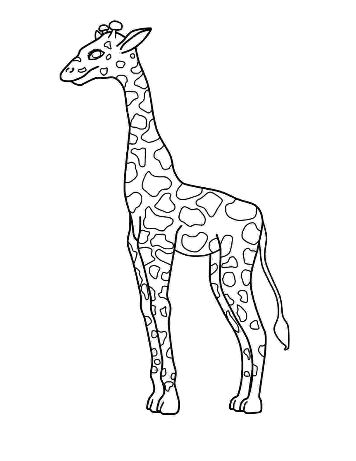 giraffe to color free printable giraffe coloring pages for kids color giraffe to