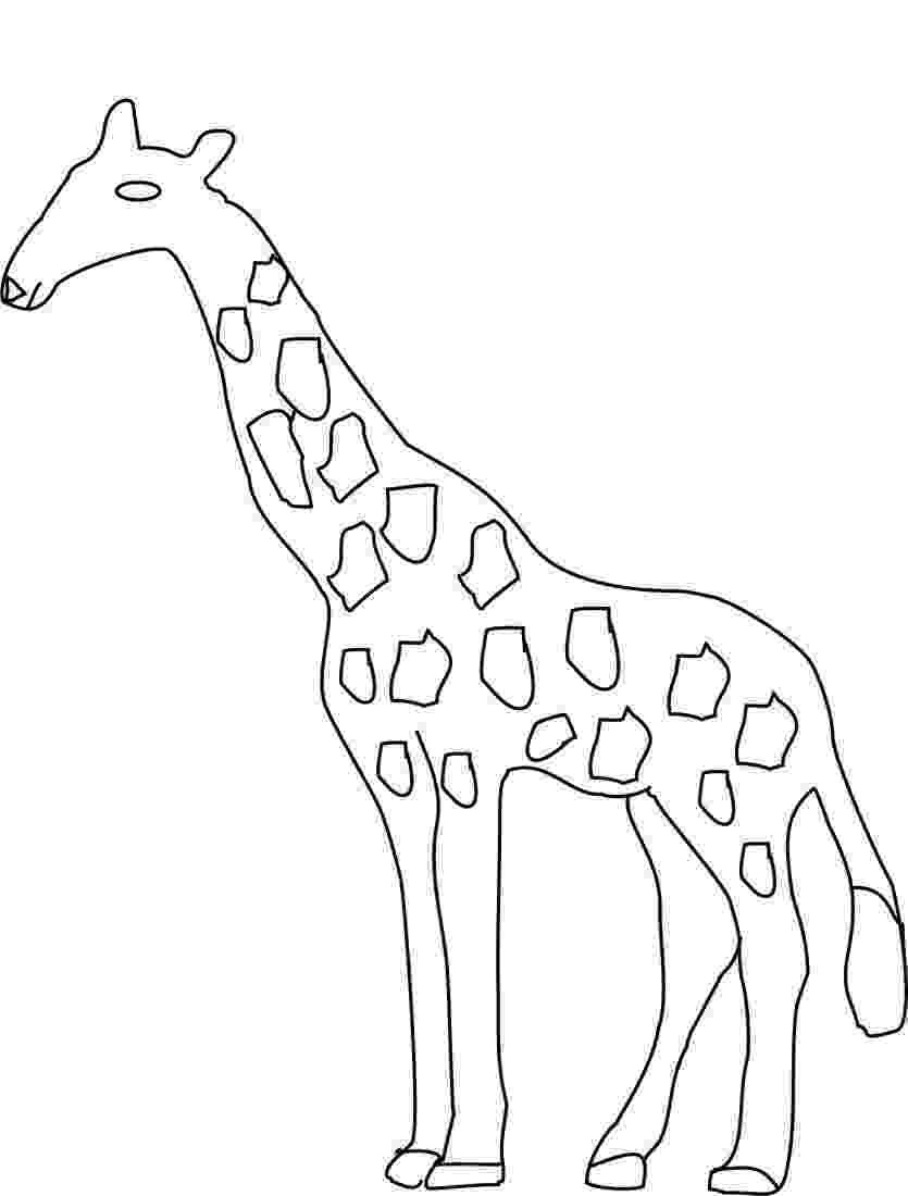 giraffe to color free printable giraffe coloring pages for kids giraffe color to 1 2