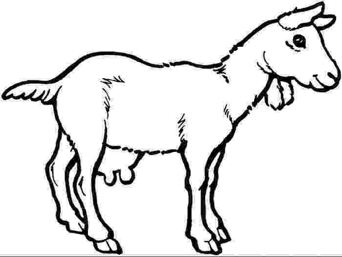 goat pictures to color free printable goat coloring pages for kids color pictures goat to