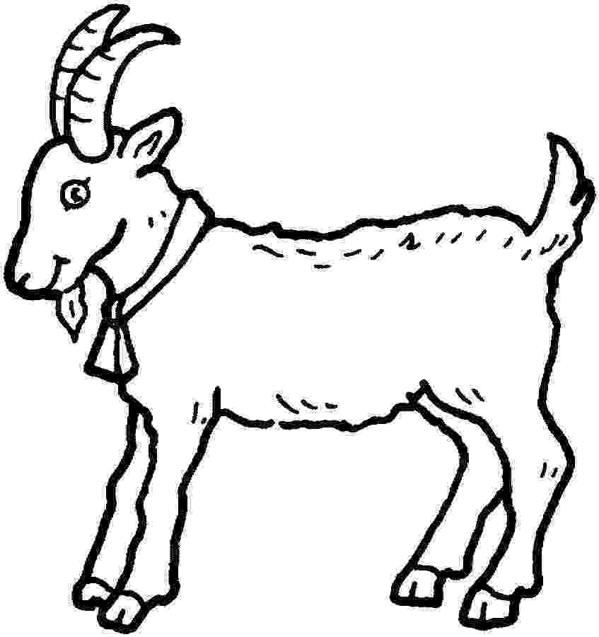 goat pictures to color free printable goat coloring pages for kids to pictures color goat