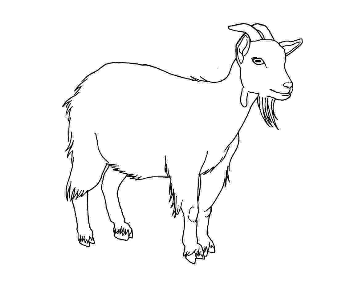 goat to color bleating goats 18 goat coloring pages and pictures print color goat to