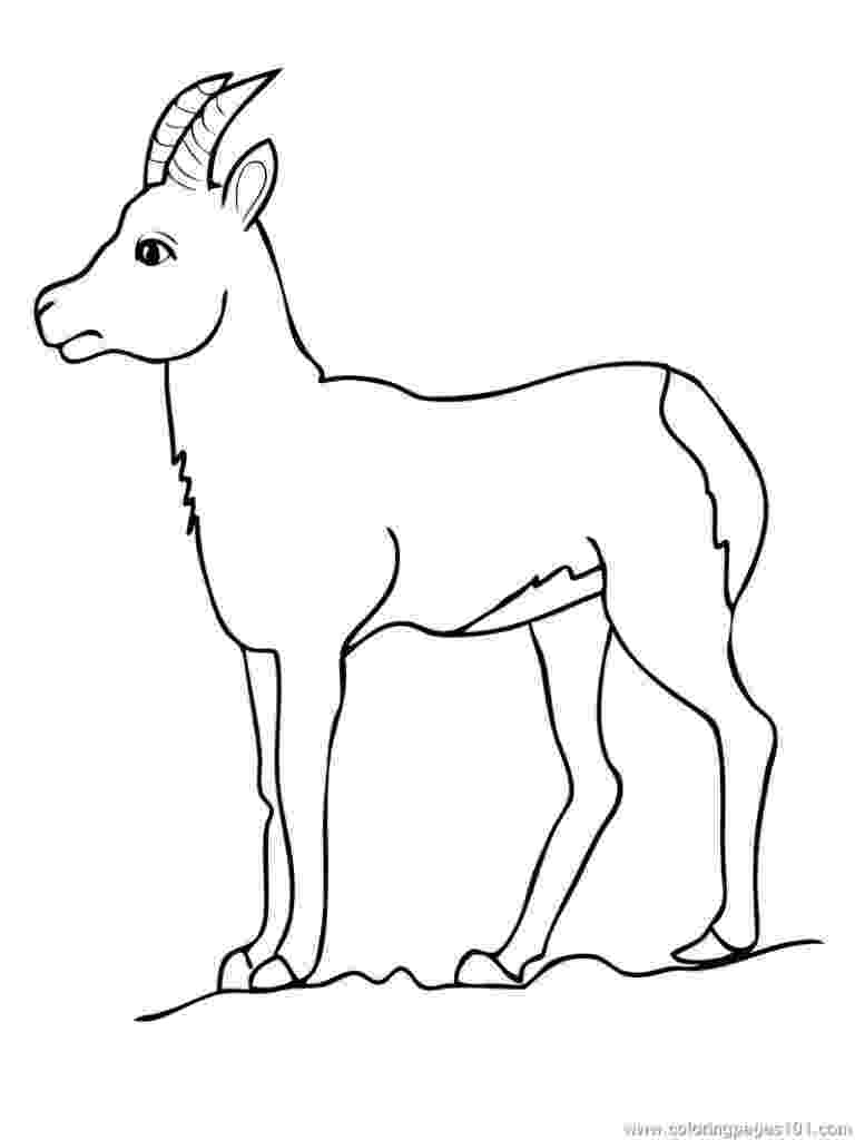 goat to color bleating goats 18 goat coloring pages and pictures print goat color to