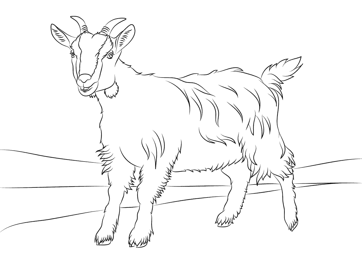 goat to color free printable goat coloring pages for kids to goat color