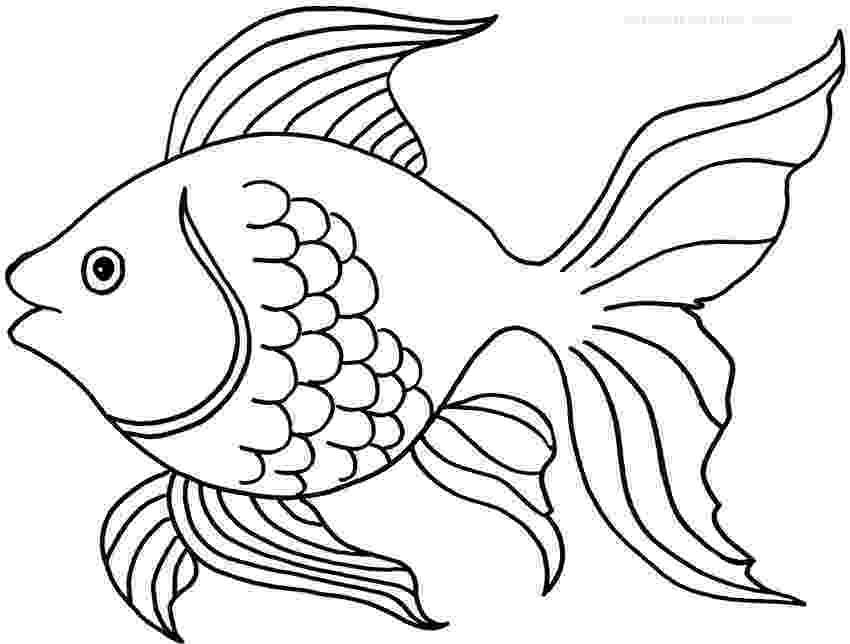 goldfish coloring page free printable goldfish coloring pages for kids page goldfish coloring