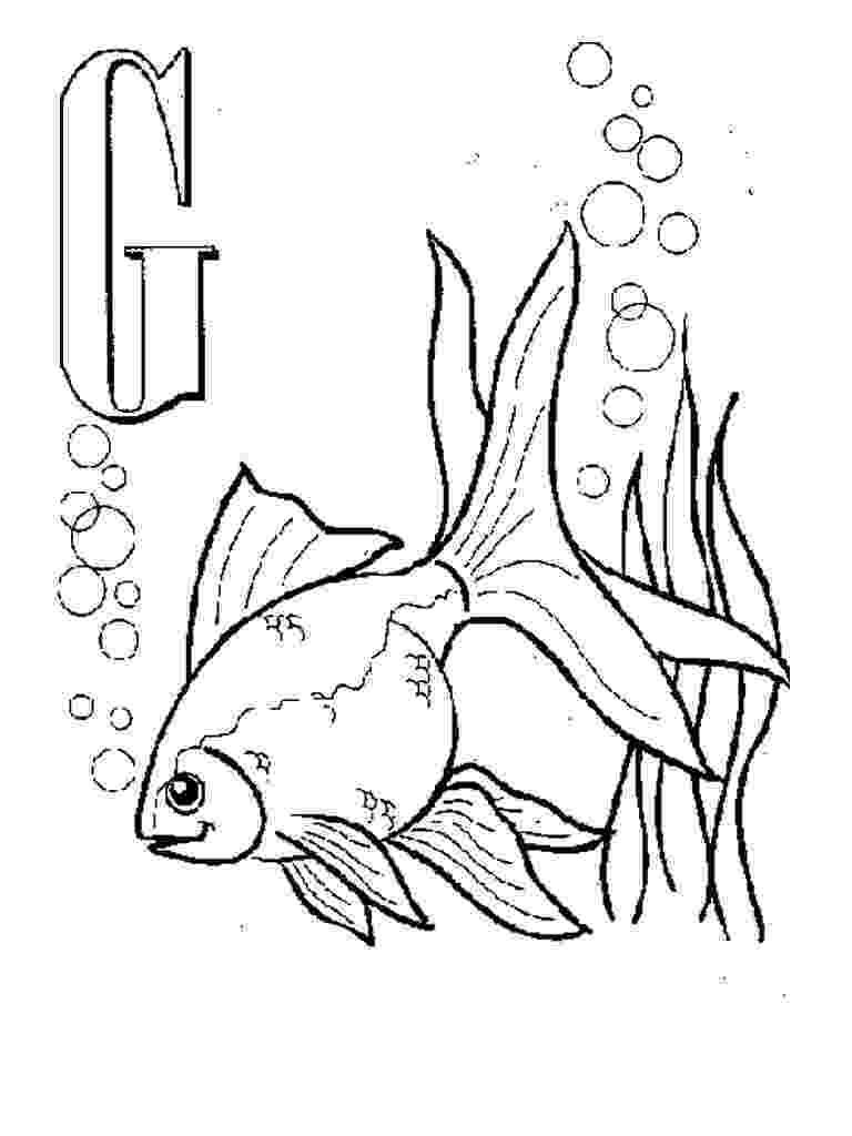 goldfish coloring page free printable goldfish coloring pages for kids page goldfish coloring 1 1