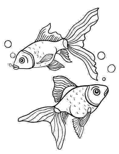 goldfish coloring page printable goldfish coloring page free pdf download at coloring goldfish page
