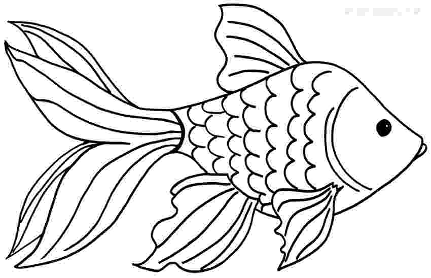 goldfish coloring page printable goldfish coloring pages for kids cool2bkids page coloring goldfish