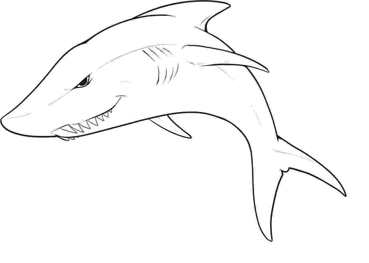 great white shark color great white shark coloring pages to download and print for white great color shark
