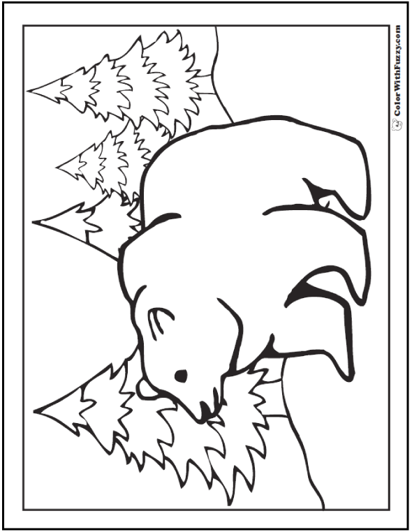 grizzly bear coloring pictures a grizzly bear coloring page is exciting bear pictures coloring grizzly