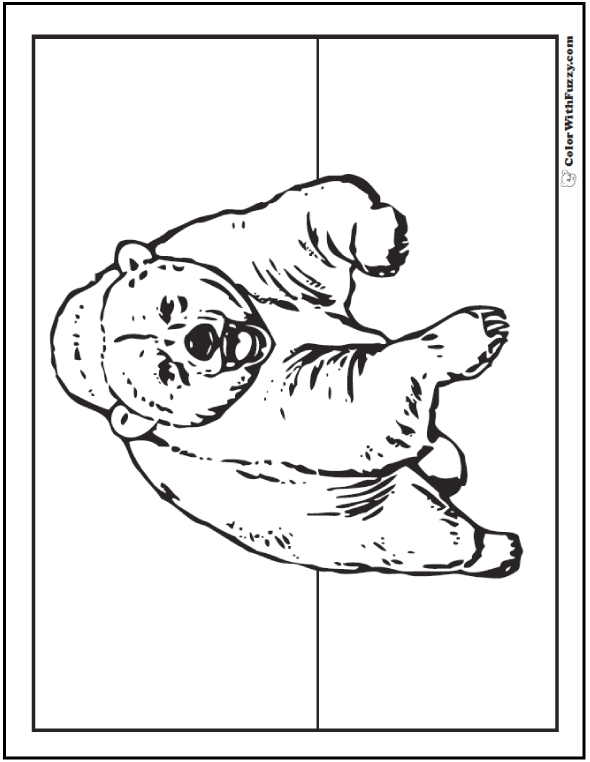 grizzly bear coloring pictures a grizzly bear coloring page is exciting pictures grizzly bear coloring