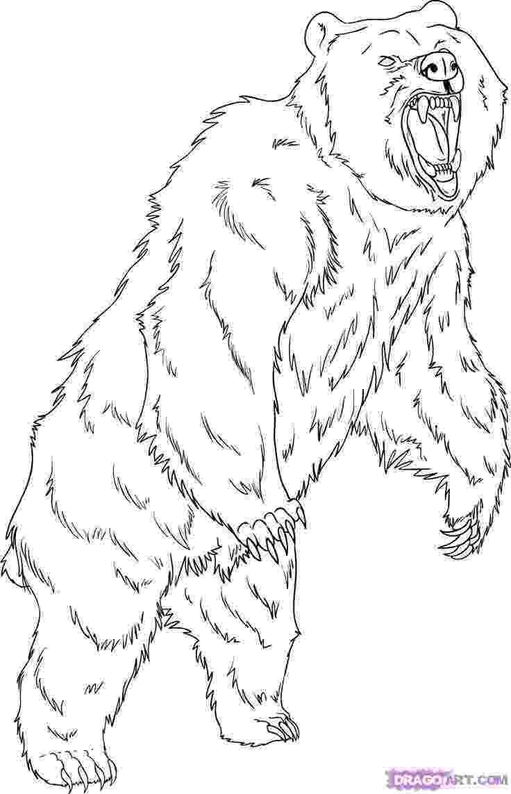grizzly bear coloring pictures grizzly bear coloring pages animal coloring book pages pictures bear coloring grizzly