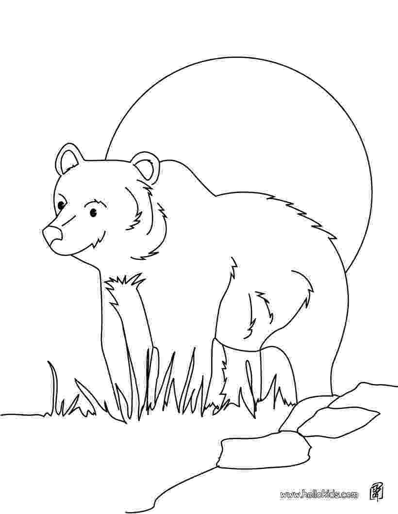 grizzly bear coloring pictures grizzly bear coloring pages getcoloringpagescom pictures grizzly bear coloring