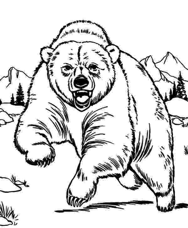 grizzly bear coloring pictures grizzly bear coloring pages grizzly bear coloring page coloring grizzly bear pictures