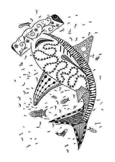 hammerhead shark color 33 free shark coloring pages printable shark hammerhead color