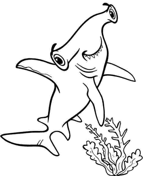 hammerhead shark color a hammerhead shark on its habitat coloring page kids color shark hammerhead