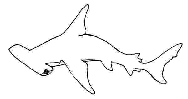 hammerhead shark color hammerhead shark coloring page free printable coloring pages shark color hammerhead