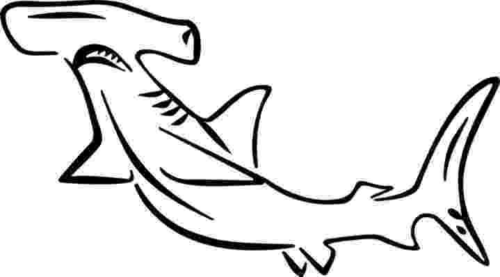 hammerhead shark color hammerhead shark outline free download on clipartmag color shark hammerhead