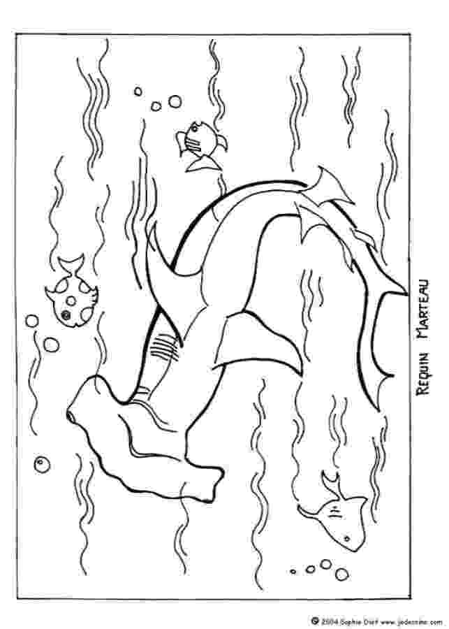 hammerhead shark coloring pages a realistic drawing of hammerhead shark coloring page hammerhead pages shark coloring