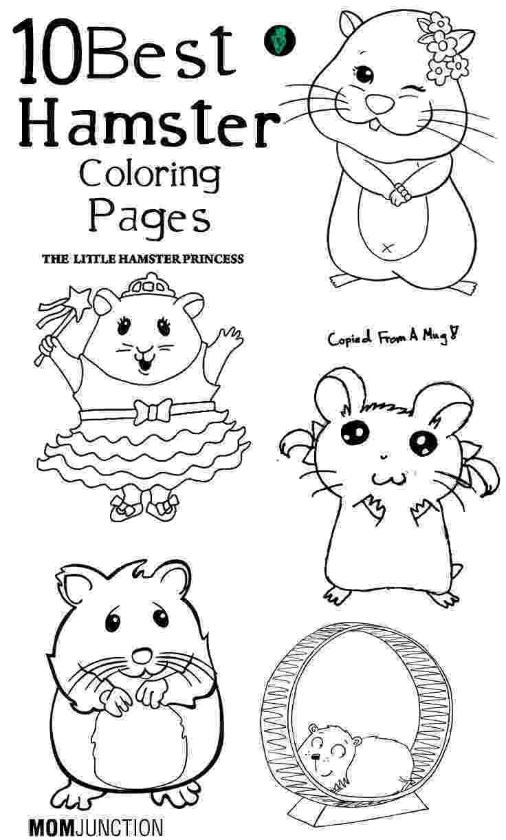hamster coloring page hamster coloring pages getcoloringpagescom page hamster coloring
