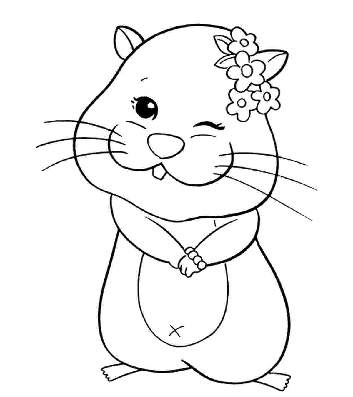 hamster coloring page hamster coloring pages hellokidscom coloring hamster page