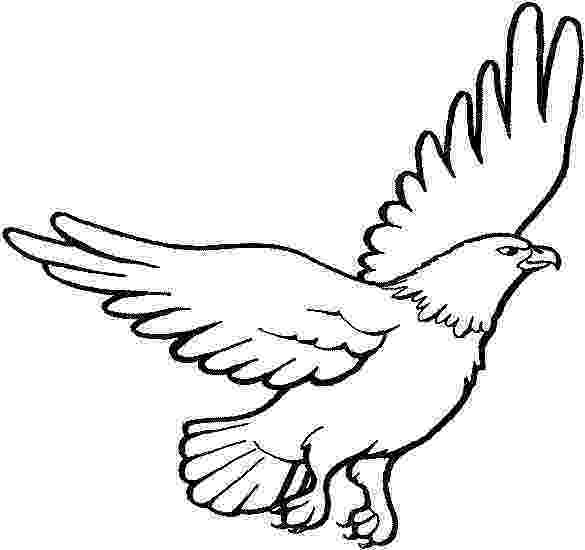 harpy eagle coloring page 20 cute eagle coloring pages for your little ones coloring page harpy eagle